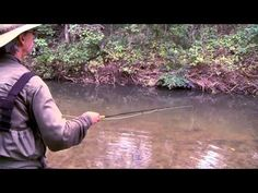 fly fishing for carp - YouTube