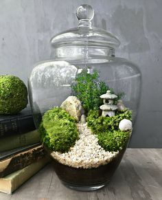 Japanese garden terrarium features a realistic miniature garden scene complete with a tiny stone pagoda (style varies) surrounded by fresh live moss
