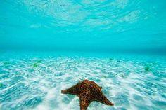 Las vacaciones en el Caribe se llaman Belice
