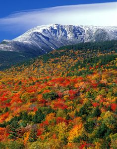 Boott Spur Mt. Washington, Pinkham Notch, NH. Bob Grant Photography