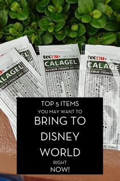 If you are heading to Disney World soon, here are our top 5 items you may want to consider bringing along with you. With all of the changes in place, these will come in handy and you will be glad you brought them. I promise, I won't steer you in the wrong direction! They are all pretty inexpensive, too!#waltexpress #disneyworld #disneyworldplanning top 5 items Disney World Planning, Disney World Vacation, Disney Vacations, Walt Disney World, Disney Nerd, Disney Tips, Disney Parks, Disney Rash, Disney Dining Tips