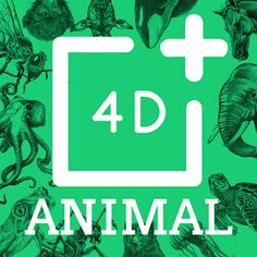 Octagon Studio Ltd Apps on the App Store Animal Fact File, Animal Facts For Kids, Fun Facts About Animals, Flashcards For Kids, Extinct Animals, Animal Cards, Ipod Touch, Ipad, Studio