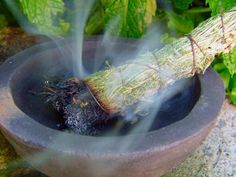 Smudging: Has Been Found To Eliminate Dangerous Bacteria