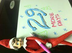 Christmas count down. Elf on a shelf.