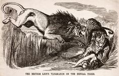 The British Lions Vengeance on the Bengal Tiger; artist: John Tenniel. Published in Punch Magazine 22 August 1857.