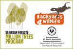 Find out about the Friends of the Urban Forest volunteers, Million Trees Program and Backyards for Wildlife Program.
