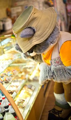 Have a sweet treat with Oliver at Bear Paw Sweets and Eats   Great Wolf Lodge Family Getaway   Great Wolf Kids