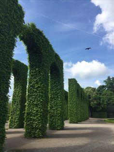 Schlosspark Schwetzingen. Www.waldundco.com  @waldundco