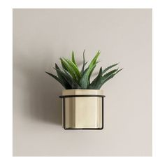 The Ferm Living Hexagon Pot is a brass plant pot for plants and flowers- perfect for adding a touch of boho-chic decor to your home. Planter Boxes, Hanging Planters, Window Box Brackets, Hummingbird Plants, Brass Pot, Sconces Living Room, Metal Plant Stand, Square Planters, All Modern