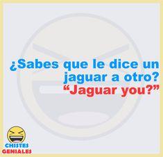 ¿Sabes qué le dice un jaguar a otro? Funny Spanish Jokes, Spanish Humor, Spanish Quotes, Crazy Funny Memes, Wtf Funny, Funny Jokes, Mexican Humor, Fact Quotes, Laughter