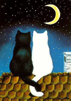 The Cat and the Moon by Anna Hollerer