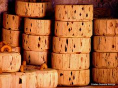 madera de cactus