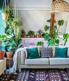 Växter bakom soffan