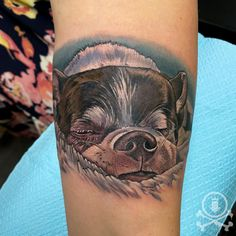 Adorable sleepy dog tattoo done by Meghan Patrick. #12ozstudios #team12oz #tattoo #tattoos #tattooed #tattooing #tattooism #tattooart #tattooartist #tattooer #tattooist #art #artstudio #tattooshop #tattoostudio #ink #inked #colortattoo #colortattoos #dog #dogs #puppy #puppies #dogtattoo #dogtattoos #animaltattoo #animaltattoos