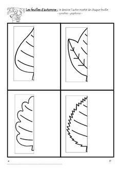 simetria fulles
