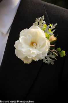 Dusty miller boutonniere