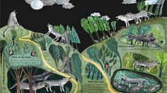 – The Big Book of Beasts by Yuval Zommer London With Kids, Howl At The Moon, Animal Facts, Wolf Howling, Book Week, Nonfiction Books, Book Series, Habitats, Fun Facts