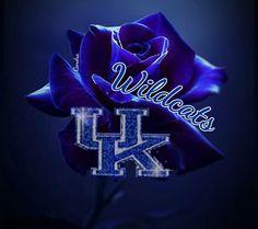 Kentucky Wildcats Football, Kentucky Sports, Wildcats Basketball, Kentucky Basketball, University Of Kentucky, Basketball Tattoos, Photos For Facebook, Go Big Blue, My Old Kentucky Home