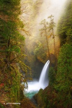 A misty morning over Metlako Falls along the Columbia River Gorge in Oregon, USA.
