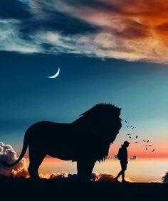 Lion King Drawings, Lion King Art, Lion Of Judah, Lion Art, Lion Pictures, Pictures Images, Jesus Christ Painting, Lion Wallpaper, Prophetic Art