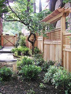 Fence pergola. Nice way to block the view to our window.