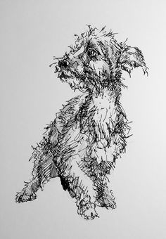 Day #92 - Ink and Graphite on Bristol board by Lucy Wilson, New Zealand…