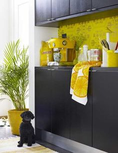Black Kitchen Cabinets with Yellow Back Panel