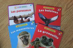 IMG_4859 Animals, Sloth, Texts, Reading, Animales, Animaux, Animal, Animais