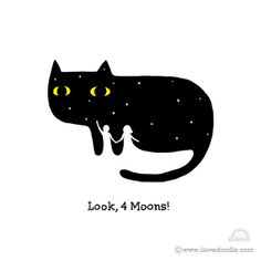 **Cute image. Creative use of color and space. The black cat with yellow eyes and white spot versus the couple standing under the stars.@JJ