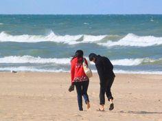 Porter Beach Area - Indiana Sand Dunes