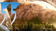 Sasquatch Chronicles SC EP:55 Spottsville Monster Part2