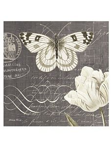 """Kathryn White Butterfly Blossom No. 4 20"""" x 20"""" Hand Embellished Canvas Vintage Butterfly, White Butterfly, Vintage Flowers, Butterfly Canvas, Deco Podge, Scrapbook Box, Vintage Pictures, Vintage Images, Vintage Cards"""