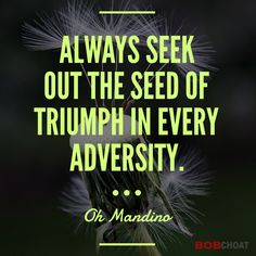 If you're taking action in life, you're going to face adversity, challenges and failures. It's how you handle it is what counts. Turning them in wins will ensure your success. #adversity #success #failure #challenge #growth #ogmandino #quotes #perception #life #wins #resilience #mindset