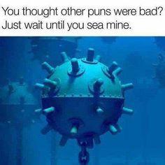 40 Pun-Filled Memes That'll Make You Facepalm - Memebase - Funny Memes Bad Puns, Funny Puns, Hilarious Jokes, Dumb Jokes, Facepalm Meme, Ocean Puns, Laughing Animals, Laughing Jokes, Terrible Puns