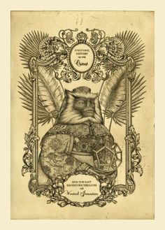 "lindsey carr | Lindsey Carr ""A Small Monkey 1″ – Roq La Rue"