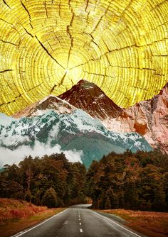 "Alexandra Gallagher; Digital, 2013, Assemblage / Collage ""Signed Giclée Print 'My Sunshine'"