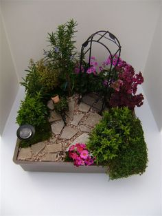 Click through for a do it yourself Fairy Garden Design. This one is called The Path Less Taken! It features Webfoot Coleus, Rosemary, Dwarf Myrtle, Primrose, Red Mars Coleus, Baby Tears and more.