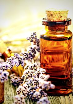 Jasmine Essential Oil, Essential Oil Blends, Chamomile Oil, Therapeutic Grade Essential Oils, Natural Cures, Natural Oils, Natural Health, Nutrition Information, Herbal Medicine