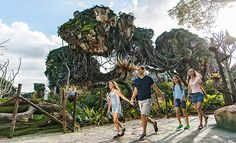 Why Disney's Pandora – The World of Avatar is a Can't-Miss for Every Type of Traveller