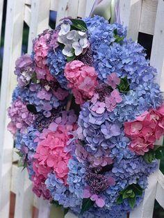 Hydrangea wreath!