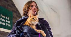 """A SPASSO CON BOB ecco il trailer molto """"gattoso"""" di una commovente storia di amicizia tra un uomo e un gatto rosso"""