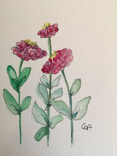 Zinnias Watercolor Card / Hand Painted Watercolor by gardenblooms