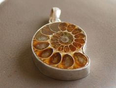 Sale Ammonite pendant studded in 925 silver Silver Jewelry for gift, beach wear by colorvilla on Etsy