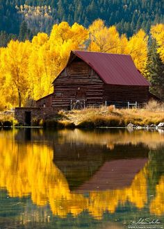 Fall in Colorado. So there should be me too.