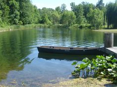 Healthy, blue water can be achieved with Organic Pond dyes and products!  www.organicpond.com