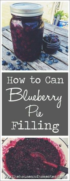Blueberry pie is the ultimate summer treat. Canning blueberry pie filling allows you to enjoy that summer goodness all year long! Preserve blueberries with this simple and tasty recipe for home-canned blueberry pie filling. Canning Tips, Home Canning, Canning Recipes, Canning Apples, Canning Vegetables, Veggies, Canning Food Preservation, Preserving Food, Canned Blueberries
