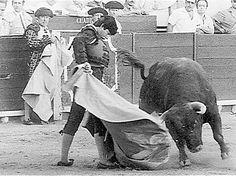 Rafael de Paula sufre una gravísima cogida en la plaza de toros de Cádiz