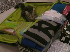How To Pack For A Two Week Trip