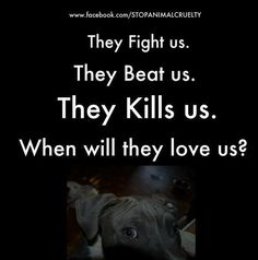 Pay attention and speak out against dog fighting.
