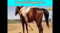 Good horse!  What happens when you're pretty